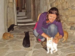 promenade chats